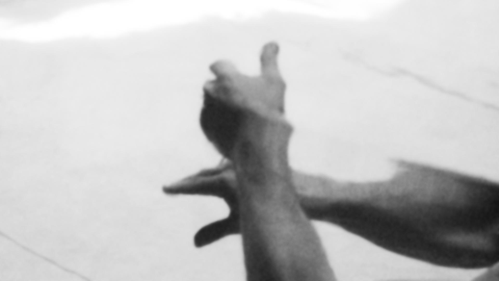 073_rsiegal_hands_mirror-2